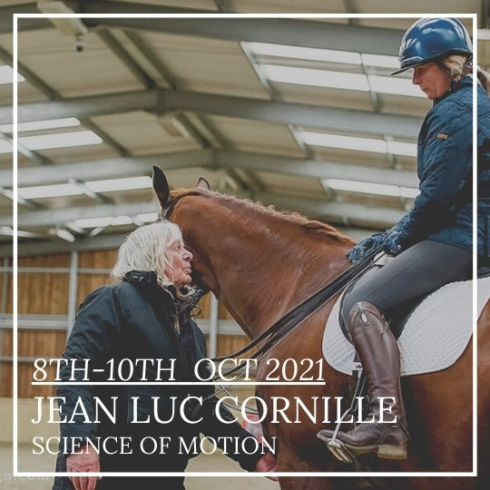 JEAN LUC CORNILLE SCIENCE OF MOTION